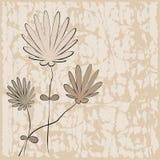 Bloemen achtergrond - vectorillustratie Stock Foto's