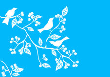 Bloemen Achtergrond, vogels vector illustratie