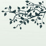 Bloemen Achtergrond, vogels Royalty-vrije Stock Afbeelding