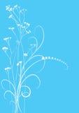 Bloemen achtergrond, weide Stock Foto