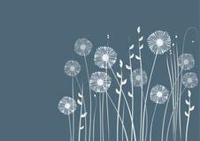 Bloemen achtergrond, weide, tuin Royalty-vrije Stock Afbeeldingen