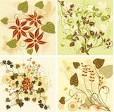 Bloemen achtergronden - vector Royalty-vrije Stock Fotografie
