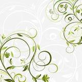 Bloemen achtergronden, vector Stock Afbeeldingen
