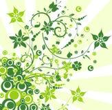Bloemen achtergronden, vectorillustratie Royalty-vrije Stock Afbeelding