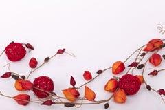 Bloemen als decoratiebehang Stock Foto