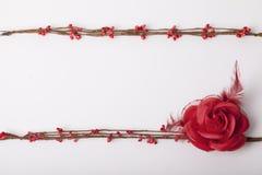 Bloemen als decoratiebehang Royalty-vrije Stock Foto