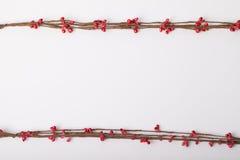 Bloemen als decoratiebehang Royalty-vrije Stock Afbeeldingen
