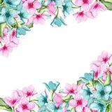 Bloemen banner vector illustratie
