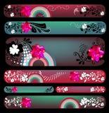 Bloemen bannerreeks Stock Foto