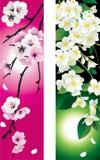 Bloemen banners Stock Afbeeldingen