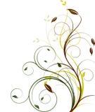 Bloemen beckgroundvector Stock Afbeeldingen