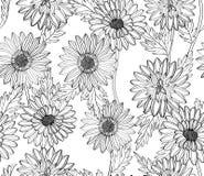 Bloemen behang Stock Afbeelding