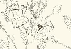 Bloemen behang met papavers Royalty-vrije Stock Foto's