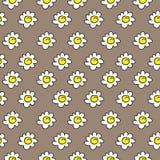 Bloemen beige naadloze kamilletekening Vector illustratie Margrieten naadloos patroon op een bruine achtergrond stock afbeelding