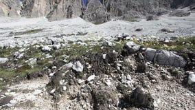 Bloemen bij de basis van de pieken van Tre Cime di Lavaredo stock videobeelden