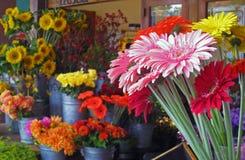 Bloemen bij de markt Stock Foto's