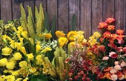 Bloemen bij een omheining Stock Afbeeldingen