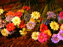 Bloemen bij Nacht Royalty-vrije Stock Afbeeldingen