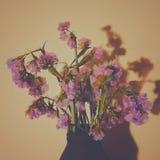 Bloemen bij Zonsondergang Stock Foto's