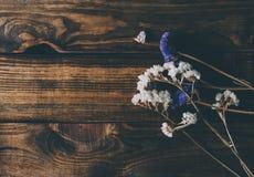 Bloemen in binnenland royalty-vrije stock foto's
