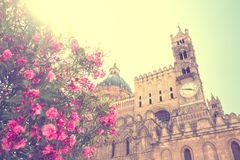 Bloemen in bloei de kerk in van Palermo, Sicilië stock afbeelding
