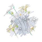 Bloemen bloemen lineaire achtergrond Royalty-vrije Stock Afbeelding
