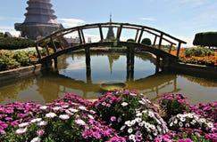 Bloemen boven op het Nationale Park van Doi Inthanon in Thailand Stock Foto