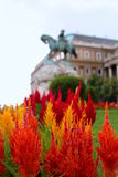 Bloemen buiten Hongaars National Gallery Royalty-vrije Stock Fotografie