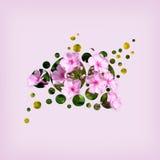 Bloemen in cirkels Stock Foto