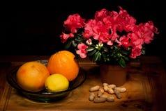 bloemen, citrusvrucht en pinda's Stock Foto