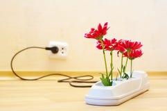 Bloemen in contactdoos Stock Afbeeldingen