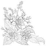 Bloemen, contouren Stock Foto's