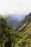 Bloemen, de bergen en de wolken Stock Foto's