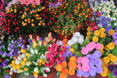 Bloemen in de bloemwinkel die worden geplaatst Stock Afbeeldingen