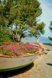 Bloemen in de boot en overzeese mening Stock Afbeeldingen