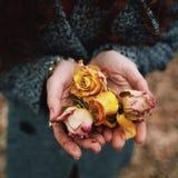Bloemen in de handen Stock Foto's