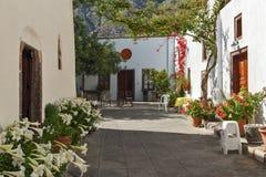 Bloemen in de Kerk van Panagia Episkopi in Santorini-eiland, Thira, Griekenland stock foto's