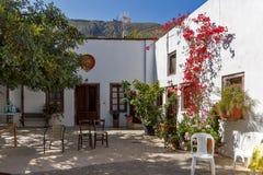 Bloemen in de Kerk van Panagia Episkopi in Santorini-eiland, Thira, Griekenland royalty-vrije stock foto