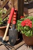 Bloemen in de Lente stock foto