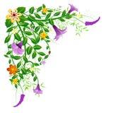 Bloemen de lentehoek Stock Afbeeldingen