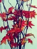 Bloemen in de ruimte royalty-vrije stock foto