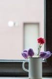 Bloemen in de spon Stock Afbeelding