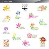 Bloemen. De vector reeks van het embleemmalplaatje. Stock Foto