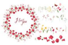 Bloemen de zomerelementen met leuke bossen van tulpen, rozen stock illustratie