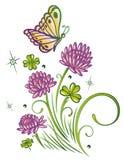 Bloemen, de zomertijd Stock Foto's