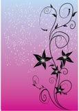 Bloemen decoratie Stock Afbeelding