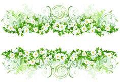 Bloemen decoratie met margrieten Stock Afbeeldingen