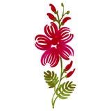 Bloemen decoratief ornament Stock Afbeelding