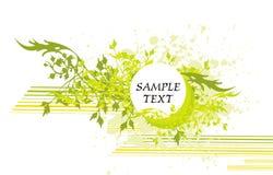 Bloemen dekking & medaillon stock illustratie