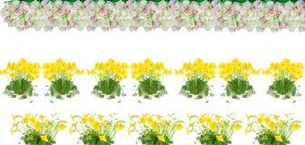 Bloemen die een grens maken Stock Foto's